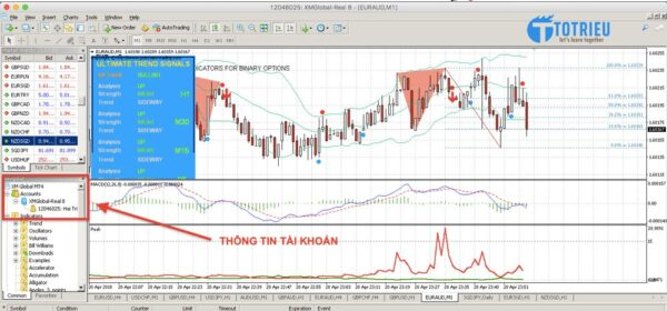 Giao diện MetaTrader 4