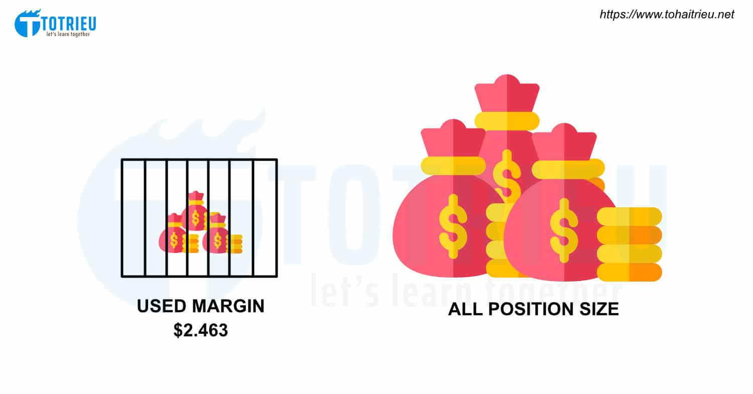 Used Margin và All Position Size